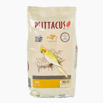 Psittacus P/...