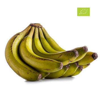 Banana Da Madeira Bio (Kg)